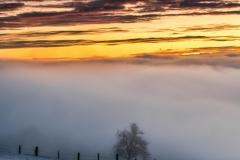 Kürnberg Sonnenaufgang Dezember 2018